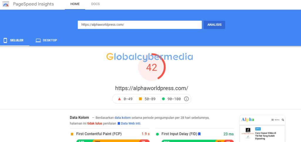 optimasi pagespeed alphawordpress